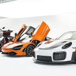 06Exotics-in-Stage-2-950x1092